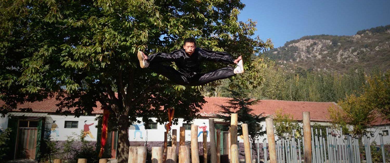 header jump poles