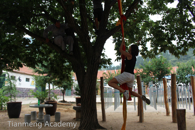 kungfu training6