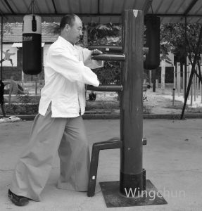WINGCHUN 副本