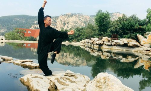 meihua quan posture did by Master Zhou